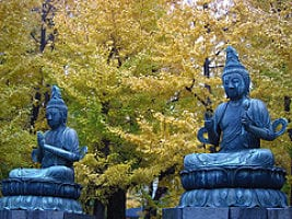 buddha-couple